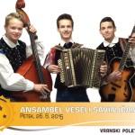 alex_ANSAMBEL VESELI SAVINJČANI-03